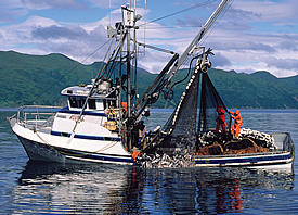 Fishing boat engines transmissions auxiliary power for Seattle marine and fishing supply